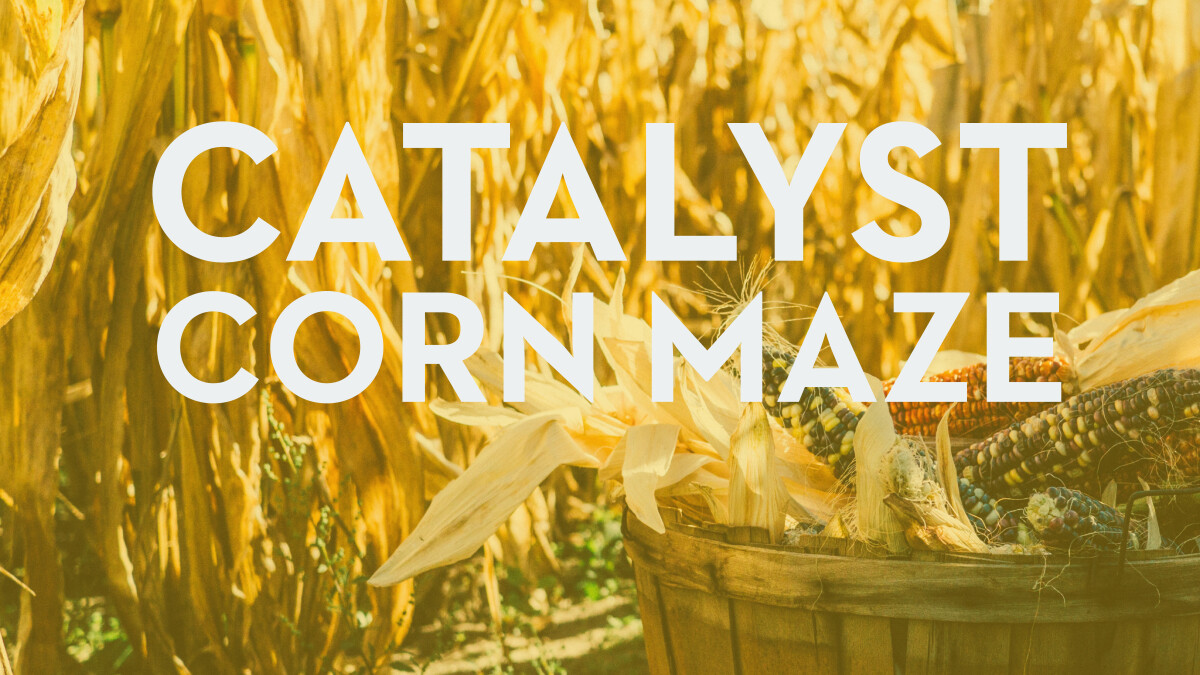 All Catalyst Corn Maze and Donuts (YUM!)